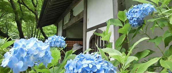 鎌倉フォトウォークに行ってきました!
